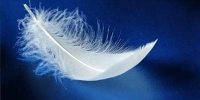 Je ne sais rien des anges mais j'aime bien faire semblant d'y croire